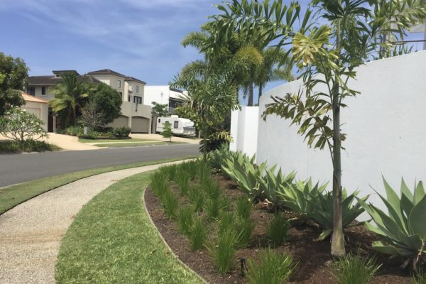 tom-robinson-living-landscapes-noosa-external-garden-after-17