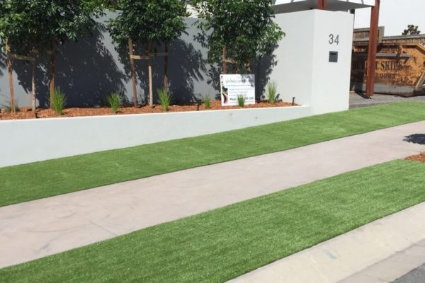 tom-robinson-living-landscapes-noosa-front-walkway-synthetic-turf-after